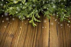 Хворостины с падая снегом Стоковое Изображение