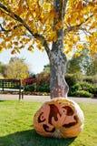 Хеллоуин в саде, Troja, Прага, чехия Стоковые Изображения