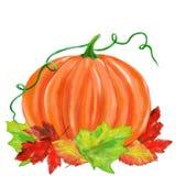 Хеллоуин проиллюстрировал тыкву с листьями Стоковое Фото