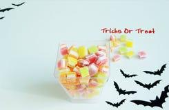 Хеллоуин, фокус или обслуживание с конфетой Стоковое Фото