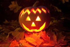 Хеллоуин Стоковое Изображение RF