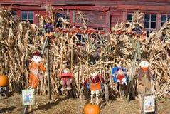 Хеллоуин Dsplay Стоковое Изображение
