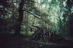 Хижина дерева стоковое фото rf