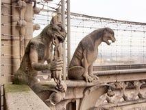 Химеры конца-вверх на соборе Нотр-Дам балкона Стоковое Фото
