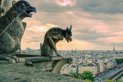 Химеры собора равенства Нотр-Дам de Парижа обозревая Стоковые Фотографии RF