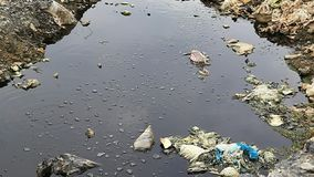 Химикаты и токсические газы произведенные местом захоронения отходов сток-видео