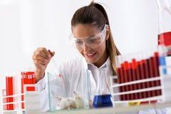 Химик женщины испытывая новую формулу на mouses Стоковое Фото