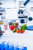 Химическая лаборатория продовольственных ресурсов Еда в лаборатории, дна дорабатывает GMO Genetically доработал еду в лаборатории стоковая фотография rf