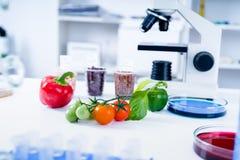 Химическая лаборатория продовольственных ресурсов Еда в лаборатории, дна дорабатывает GMO Genetically доработал еду в лаборатории стоковые фотографии rf
