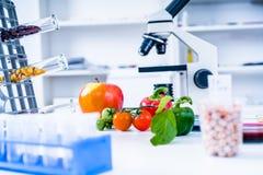 Химическая лаборатория продовольственных ресурсов Еда в лаборатории, дна дорабатывает GMO Genetically доработал еду в лаборатории стоковые изображения