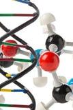Химическая модель молекулы и структура дна модель над белым backg Стоковые Изображения