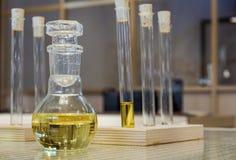 химическая тонизированная лаборатория изображения стеклоизделия Стоковые Изображения RF