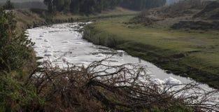 Химический отход пенится на реке Стоковые Фотографии RF