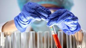 Химический ученый кладя пробирку бумаги лакмуса, измеряя уровень пэ-аш, анализ стоковые фотографии rf