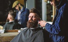 Хипстер с бородой покрытой с накидкой уравновешивая профессиональным парикмахером в стильной парикмахерскае Концепция холить barb стоковое фото