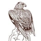 Хищная птица вектора нарисованная рукой Иллюстрация в богемском стиле Иллюстрация вектора