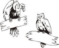 Хищник и сыч с досками бесплатная иллюстрация