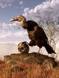Хищник и череп иллюстрация вектора