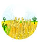 хлебоуборка зерна бесплатная иллюстрация