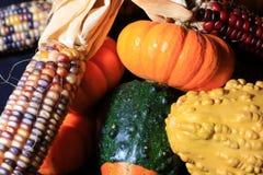 Хлебоуборка осени стоковая фотография rf