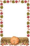 хлебоуборка рамки Стоковое фото RF