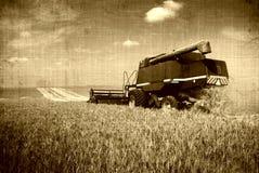 хлебоуборка ретро стоковая фотография rf
