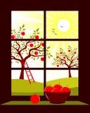хлебоуборка яблока иллюстрация вектора
