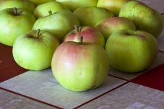 хлебоуборка яблок Стоковые Фотографии RF
