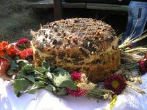 Хлебоуборка Стоковые Фотографии RF
