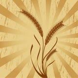 хлебоуборка бесплатная иллюстрация