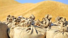 хлебоуборка sacks пшеница Стоковое Фото