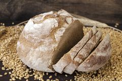 Хлеб Rye стоковые фото