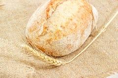 Хлеб sourdough пшеницы с ухом пшеницы на крупном плане дерюги Стоковые Изображения RF