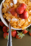 хлопья мозоли завтрака Стоковое Изображение