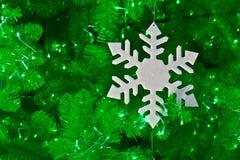 Хлопь снежка Стоковое Изображение RF