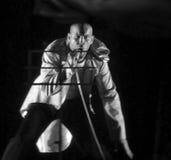 хмель вальмы танцульки французский Стоковая Фотография