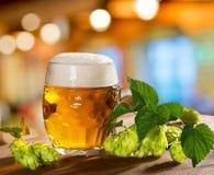 Хмели и стекло пива Стоковые Изображения