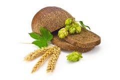 Хмель колосков хлеба стоковые фото