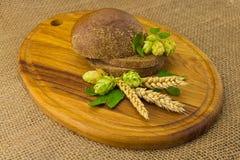 Хмель колосков хлеба стоковые изображения