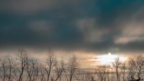 Хмурое и драматическое небо над treetops Восход солнца во время темной погоды Видео промежутка времени видеоматериал