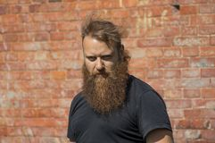 Хмурый, недобрый портрет человека с бородой стоковые фотографии rf