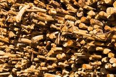 хоботы деревянные Стоковая Фотография