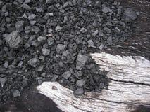 Хобот дерева, который сгорел огонь сформированный как птица стоковые фотографии rf