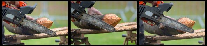 Хобот на зеленой траве которой режет woodcutter с увидел с Стоковое Изображение RF