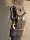 хобот пряжки Стоковое фото RF