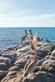Ход головы пеликана Калифорнии Брайна на утесе около Todos Сантоса на Punta Lobos в Нижней Калифорнии Мексике Стоковые Изображения