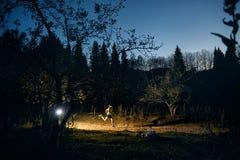 Ход следа в лесе ночи стоковые фото