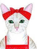 Хозяйка кота Стоковые Фото