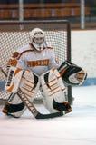 Хоккей на льде молодости стоковое изображение rf