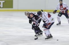 Хоккей на льду Стоковая Фотография